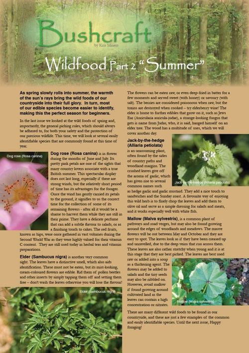 wild food article