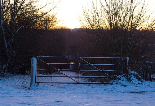 Snowy Farm Gate